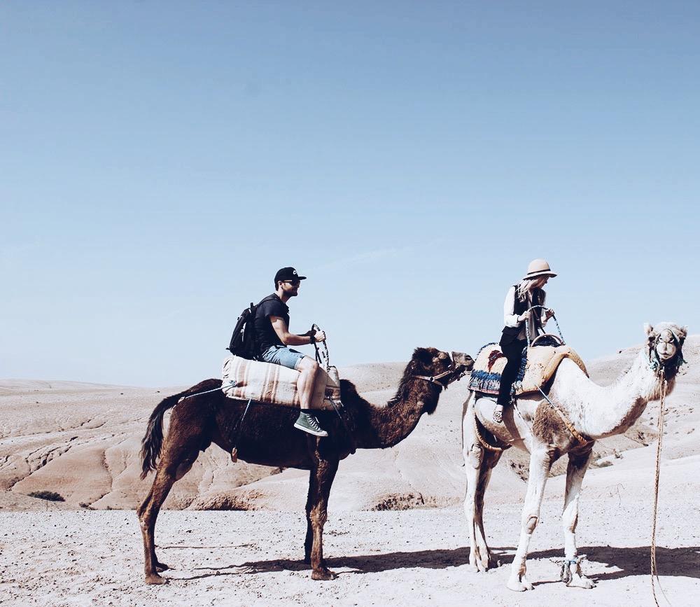 Adventures with Dunes & Desert