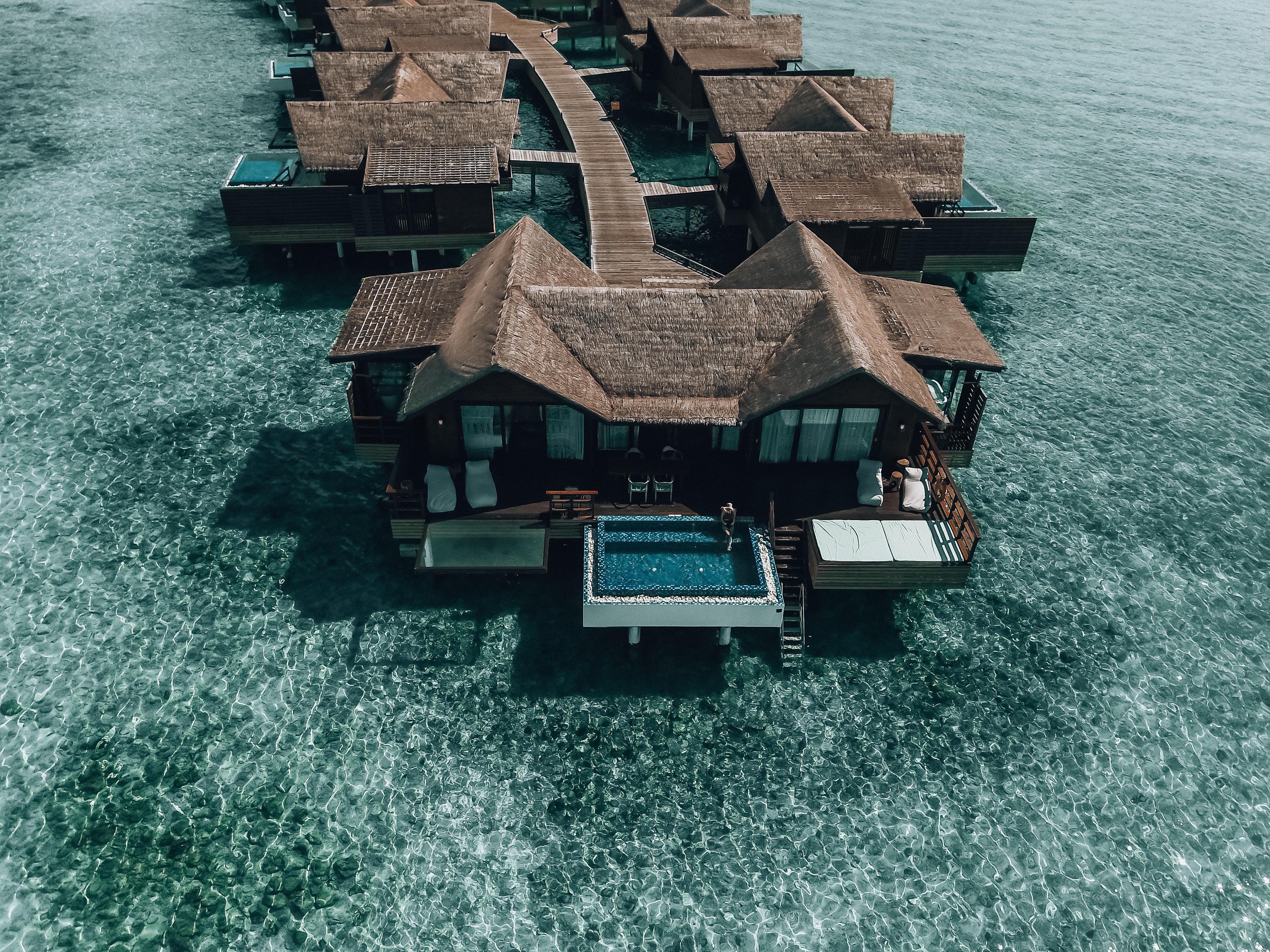 Paradise days